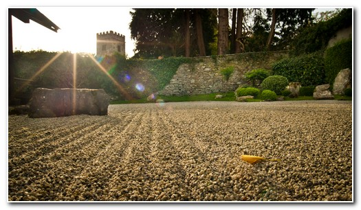 dartington hall wedding photographer Zen Garden
